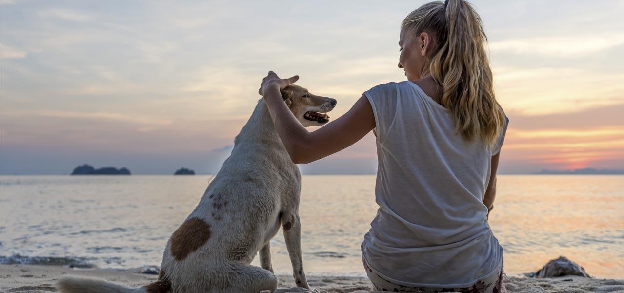 vacanze con animali in toscana al mare